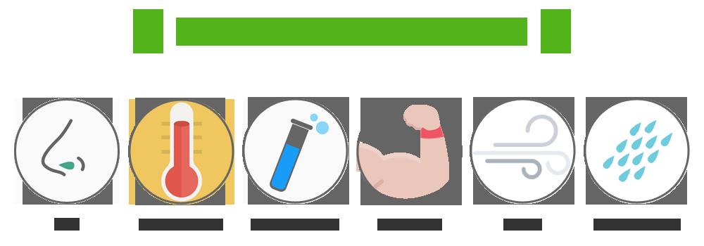 HACCP対応塗床材の特徴